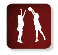 netball-stats-logo